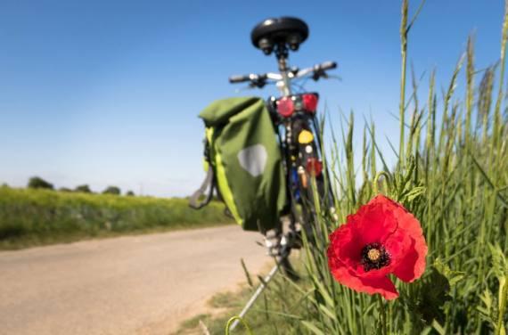 Der Rundum-Check fürs Fahrrad