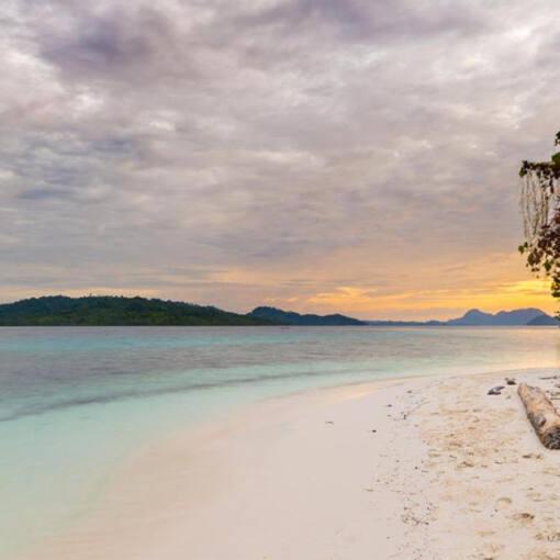 Survival-Guide: Wie überlebt man auf einer einsamen Insel?