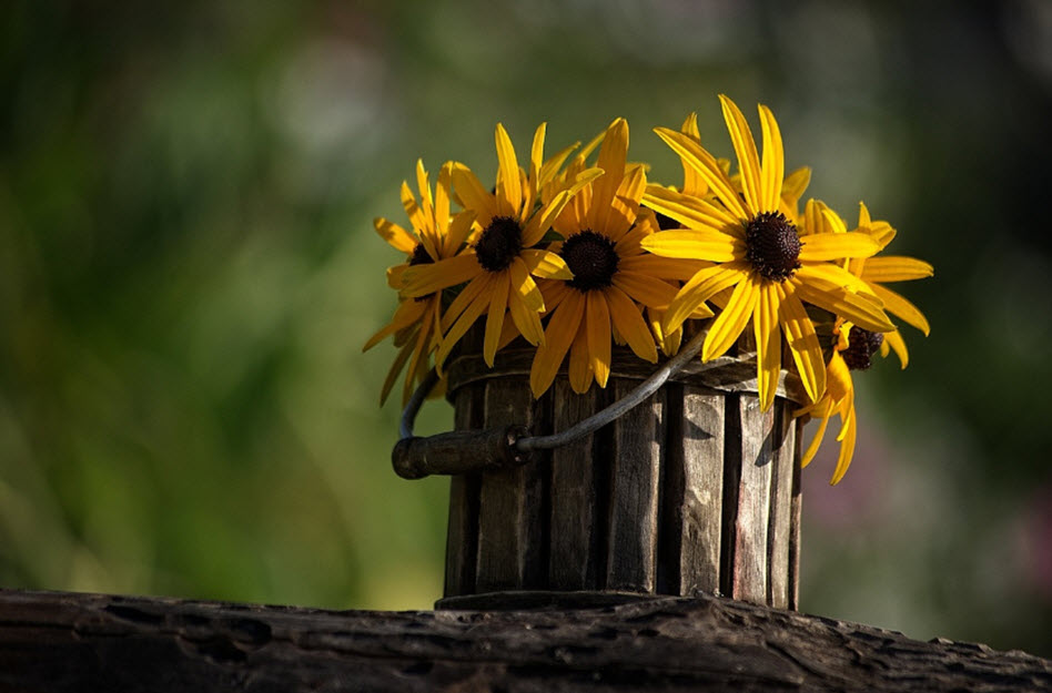 Gartendeko - Blumentopf